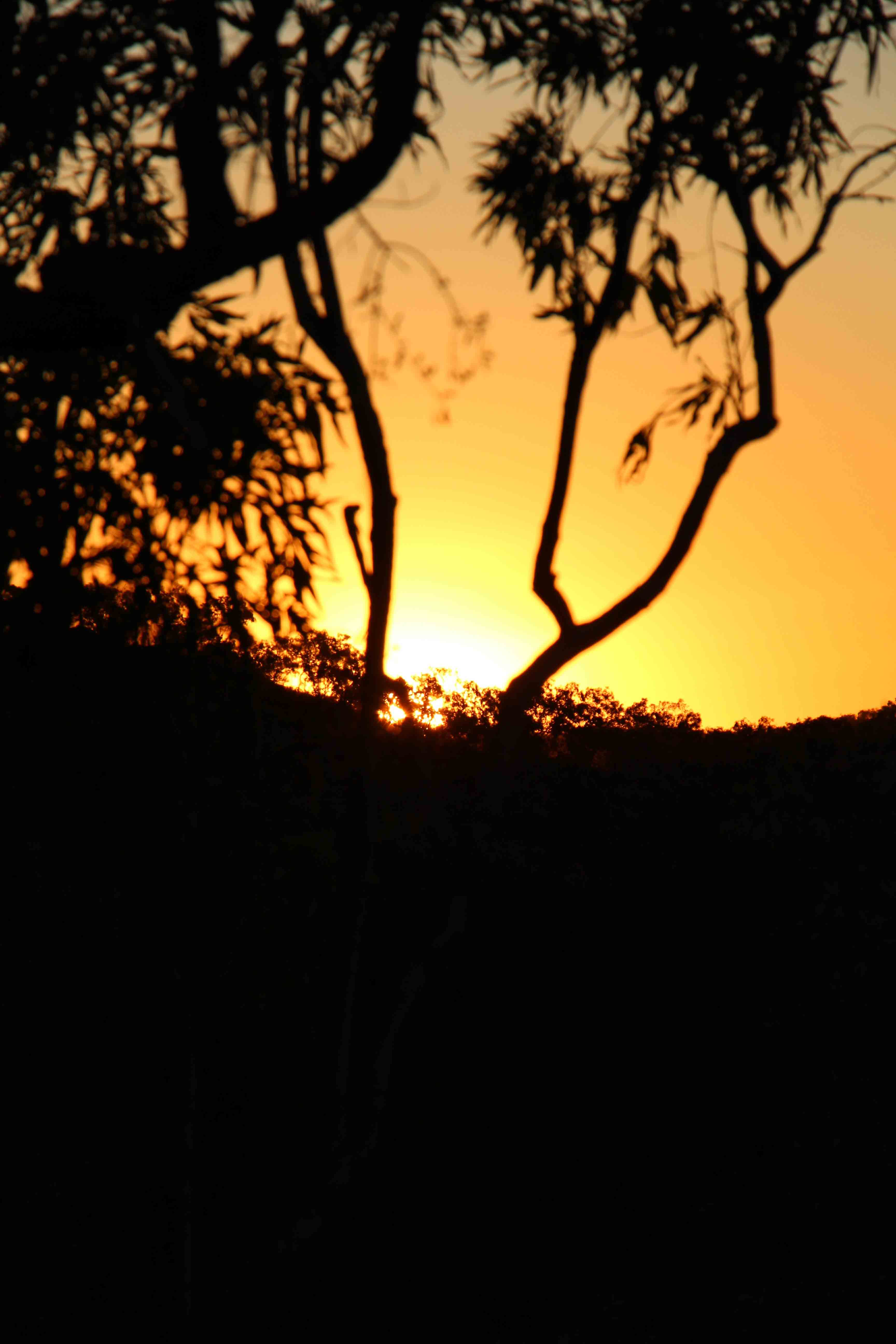 Sunset over Western Australian bush